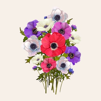 Mixed anemone flowers