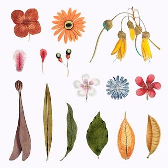 混合花と葉セットベクトル