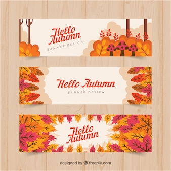 Modern autumn banners with flat design
