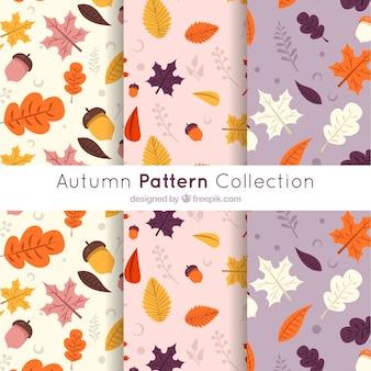 Modern autumn pattern collection