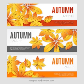 Modern autumnal banners with golden leaves