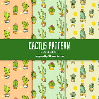 Modern cactus pattern collection