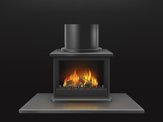 Modern fireplace with burning wooden logs, flame inside metallic firebox