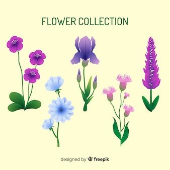 Collezione floreale moderna con design piatto
