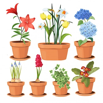 Modern flower pots. colored decorative plants tree tulip  illustrations