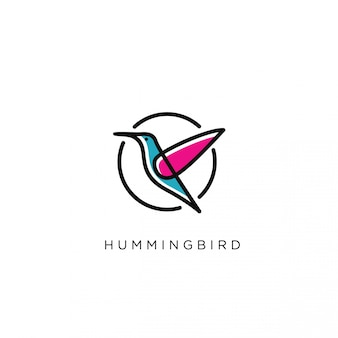 Modern humming bird logo template
