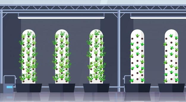 현대 유기농 수경 수직 농장 인테리어 농업 스마트 농업 시스템 개념 녹색 식물 성장 산업 수평