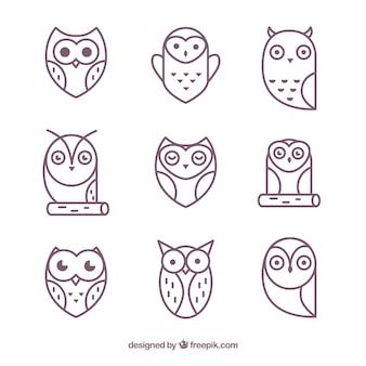 Modern outline owl pack