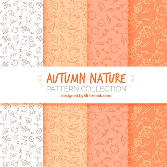 Modern pack of autumn nature patterns