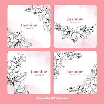 Modern pack with hand drawn jasmine cards