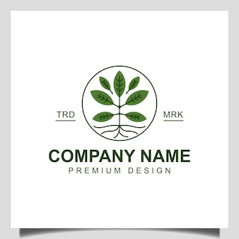 Современный корень растения дизайна логотипа жизни дерева. сад дерево весна естественные деревья рост значок вектор шаблон