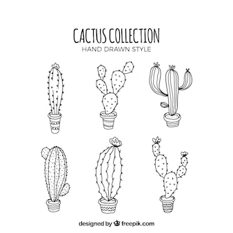 Modern set of sketchy cactus