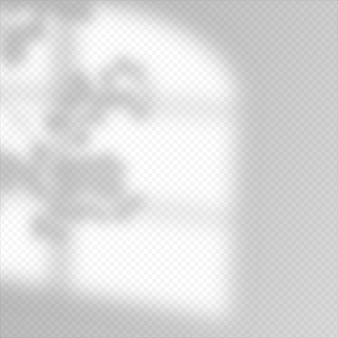 현대적인 그림자 오버레이, 모든 목적을 위한 훌륭한 디자인. 창밖의 흐릿한 부드러운 그림자와 창 밖의 식물 가지. 투명 한 배경에 고립 된 자연 그림자입니다.