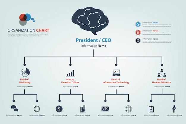 Modern and smart organization chart in vector style