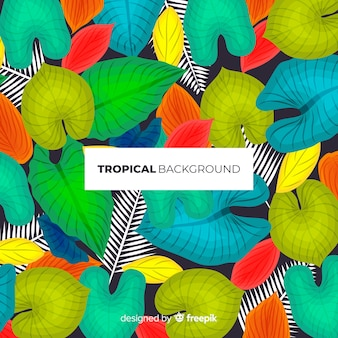 Modern tropical leaves background