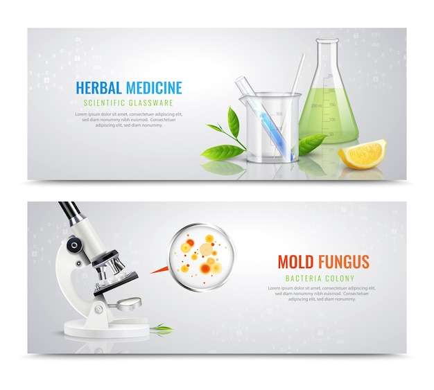 Mold fungus bacteria horizontal banners with realistic images of herbs microscope and colony spots with text