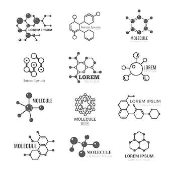 Molecular logo. chemistry dna molecule scientific structure atom business brand vector concept