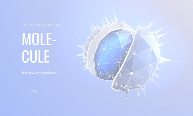 Molecule in polygonal wireframe style
