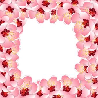 Momo peach flower blossom border background2