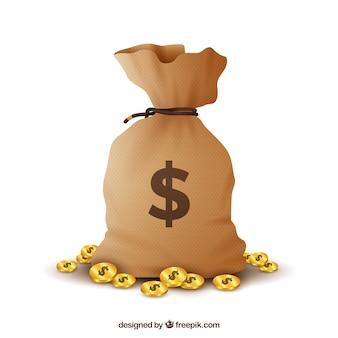 Borsa di denaro con sfondo dollari
