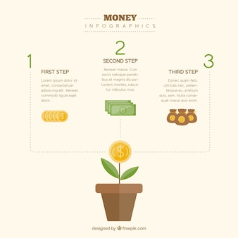 Money plant with infographic elements