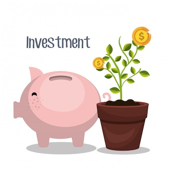 Money savings and investments