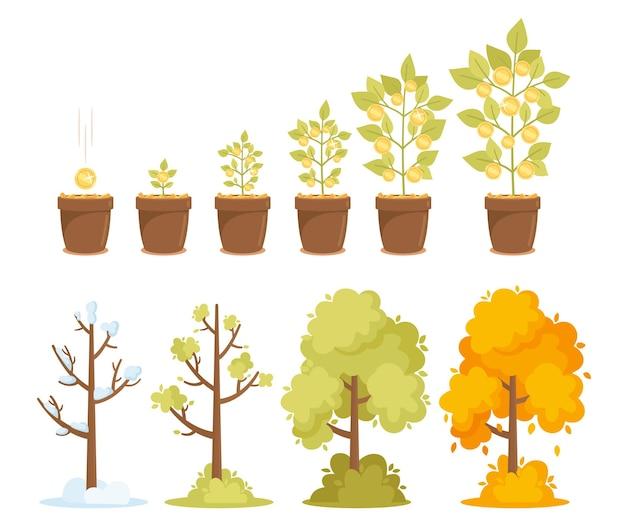 머니 트리 성장, 자본 이득 및 계절 나무. 나뭇가지에 황금 동전이 있는 작은 새싹에서 큰 식물까지의 타임 라인. 겨울, 봄, 여름, 가을 시즌. 만화 벡터 일러스트 레이 션