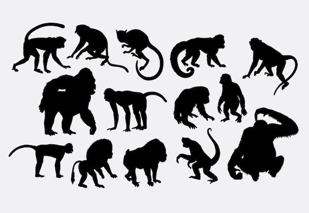 Monkey ape and gorilla silhouette