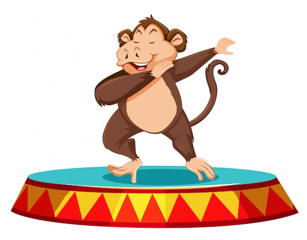Monkey dancing on the stage