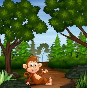 Monkey enjoying in jungle scene