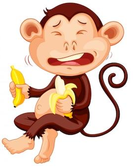 Monkey holding banana crying