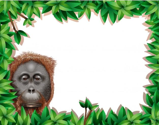 Monkey in leaf frame