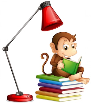 Monkey reading book on white background