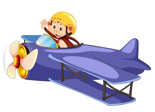 A monkey riding airplane