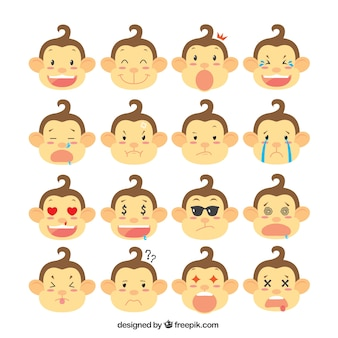 Selezione scimmia con le espressioni facciali