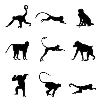白い背景で隔離の猿のシルエット