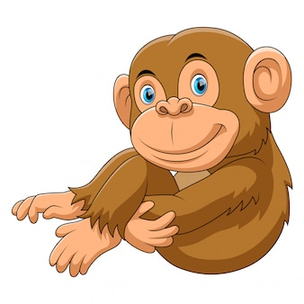 Monkey sitting cartoon