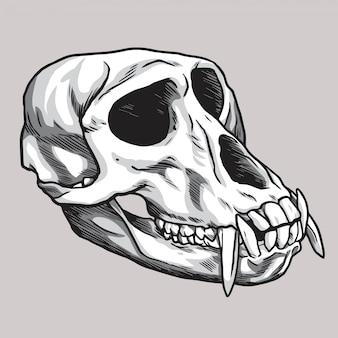 Monkey skull hand-drawn drawing vector illustration