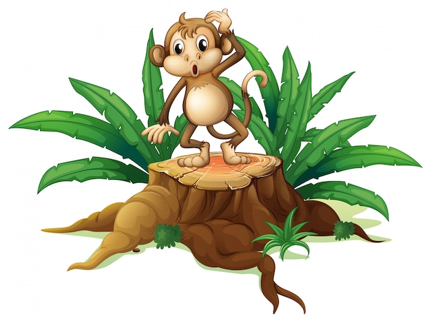 A monkey standing on the stump with leaves