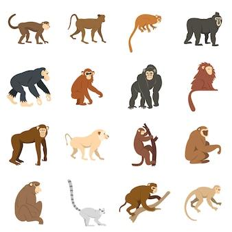 Monkey types icons set in flat style