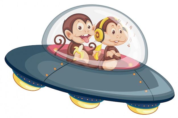 Monkey on the ufo