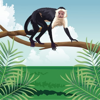 Monkey walk on branch tropical fauna and flora landscape