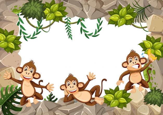 A monkey in wild boarder