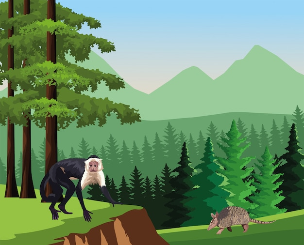 ジャングルで野生のアルマジロ動物と猿