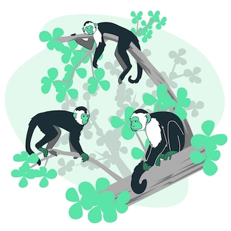 Monkeys concept illustration