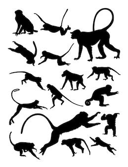 Силуэт обезьян