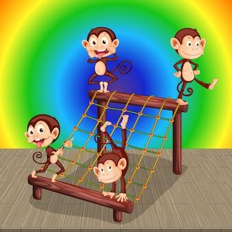 Monkeys with climbing net on rainbow gradient background