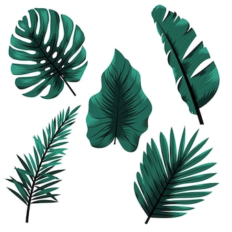 Monochromatic style tropical leaves