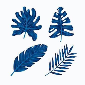 단색 열대 나뭇잎 팩
