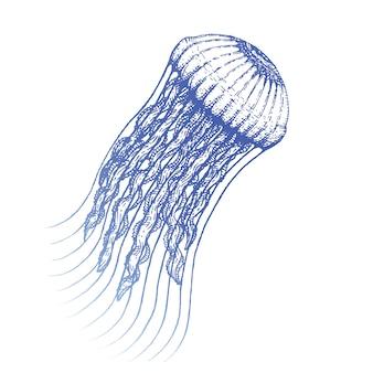 モノクロ青インク手描きクラゲブラックワークイラスト